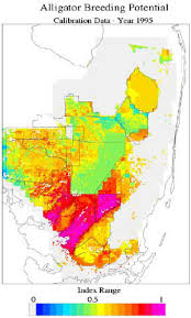 alligators in map sofia sfrsf wildlife wetland ecology how s restoration