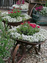 17 best images about rock garden on pinterest shade landscaping