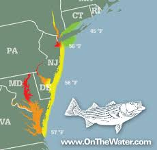 Trenton Nj Zip Code Map by Striper Migration Map April 23 2015 On The Water