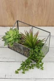 terrarium displays containers u0026 supplies 20 60 saveoncrafts
