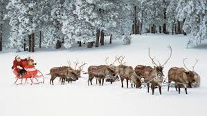 santa and reindeer usda issues permit for santa s reindeer osu extension clermont county