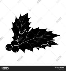 holly berry silhouette christmas vector u0026 photo bigstock