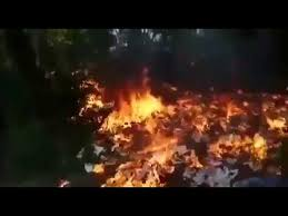 Backyard Campfire Man Uses Too Much Gas For His Little Backyard Fire Youtube