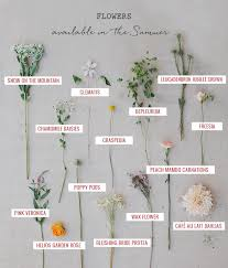 wedding flowers guide seasonal flower guide summer seasonal flowers flower and green