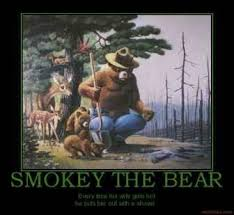Smokey The Bear Meme - best smokey the bear meme smokey the bear quotes quotesgram