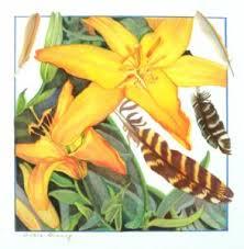 Yellow Lilies Yellow Lilies U2013 Sandra Benny