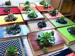 planter for succulents indoor succulent planter cast planters with succulents indoor