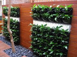 How To Build A Vertical Garden - how to make a vertical garden vertical garden ideas