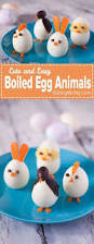 Easter Eggs Decorated Like Animals by Remember The Easter Cat Crazy As A Bag Of Hammers Animals