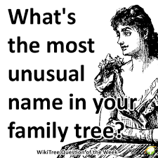 question of the week what s the most name you ve found in
