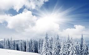 bright winter day 1680x1050 567129
