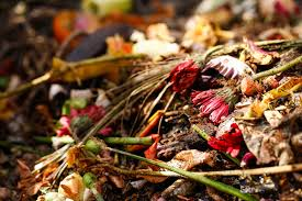 Composting Pictures by 7 Basic Composting Secrets For Better Results One Green Planet