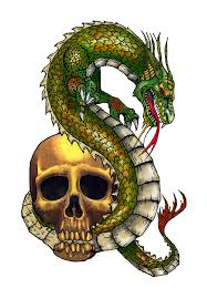 skull biting dragon my thoughts ideas and trivia