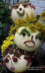 the spirit of halloween 48 best garden pumpkins squash gourds images on pinterest