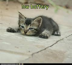 Tired Cat Meme - lolcats battery lol at funny cat memes funny cat pictures