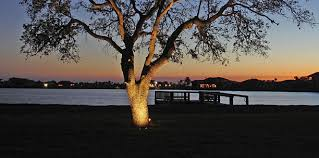 Outdoor Up Lighting For Trees Lighting Design Outdoor Lighting And Landscape Lighting In St
