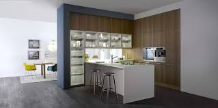 Modern German Kitchen Designs German Kitchen Cabinets Lofty Inspiration 3 Your Hbe Kitchen