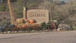 Denver Botanic Gardens Corn Maze Told She Was Thrown To Ground At Corn Maze