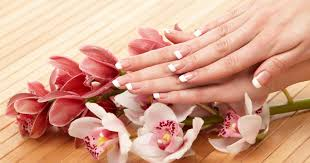 nail salon mendota heights nail salon 55120 enchanted nails