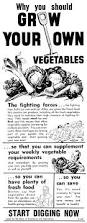 Growing Your Own Vegetable Garden by Is It Time To Resurrect The Wartime U0027grow Your Own U0027 Campaign