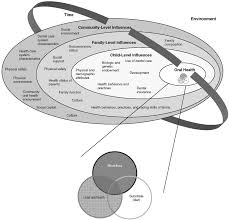 The Interplay Of Physical And Influences On Children U0027s Oral Health A Conceptual Model