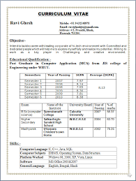 curriculum vitae sles for freshers pdf to word professional resume resume sle of post graduate in computer