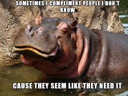 Baby Hippo Meme - list of synonyms and antonyms of the word hippo meme