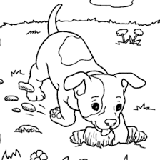 color games kids pokemon coloring pages kids