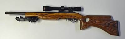 ruger 10 22 light mount customizing the ruger 10 22 the blog of the 1800gunsandammo store