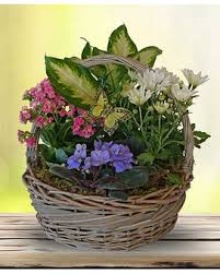 plano florist send flowers to ted dickey funeral home plano florist