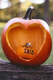 thanksgiving baby announcement ideas top 25 best pumpkin baby announcement ideas on pinterest