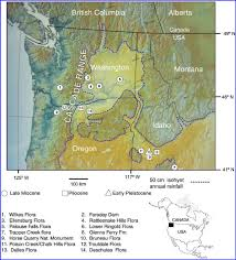 Oregon Elevation Map digital elevation map of pacific northwest showing fossil