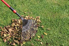 reviving your lawn after the winter a concord carpenter