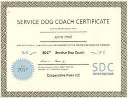 dog training fresno ca yosemite bark pet services dog training