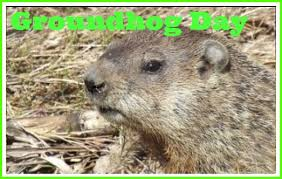 groundhog baby animal facts encyclopedia