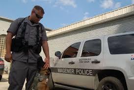 belgian malinois vest k 9 unit joins wagener police news aikenstandard com