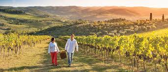 the best time of the year to visit napa valley napavalley