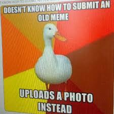 Submit A Meme - technologically impaired duck wants to submit a meme adviceanimals
