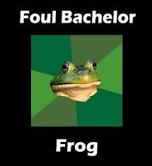 Foul Bachelor Frog Meme Generator - foul bachelor frog meme generator incredible photos foul bachelor