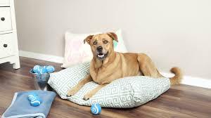 cuccie per cani tutte le offerte cascare a fagiolo cuccia per cani in stoffa o in legno dalani