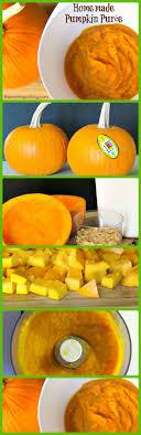 best 25 pumpkin recipes to freeze ideas on pumpkin