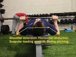 My Shoulder Hurts When I Bench Press Busting The Bench Press Myth For Pitchers Increase Pitching Velocity