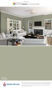 Sage Green Kitchen Ideas - cabinet sage green kitchen paint the best sage kitchen ideas