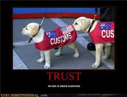 No Trust Meme - trust funny pictures quotes pics photos images videos of