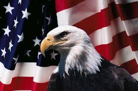 Eagle American Flag Bald Eagle American Flag Constitution