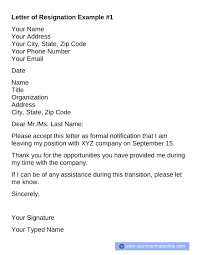 Resignation Letter Example 5 Professional Resignation Letter Template Resignation Examples