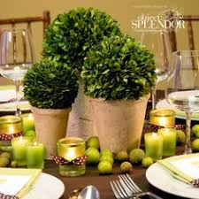 Topiary Wedding - topiary wedding centerpieces add some rustic charm spinning