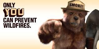 Smokey The Bear Meme - smokey the bear meme 28 images smokey the bear says meme
