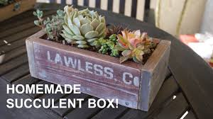 succulent planter diy awesome wooden succulent planter box youtube