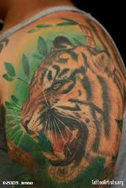 tiger cover up artists org